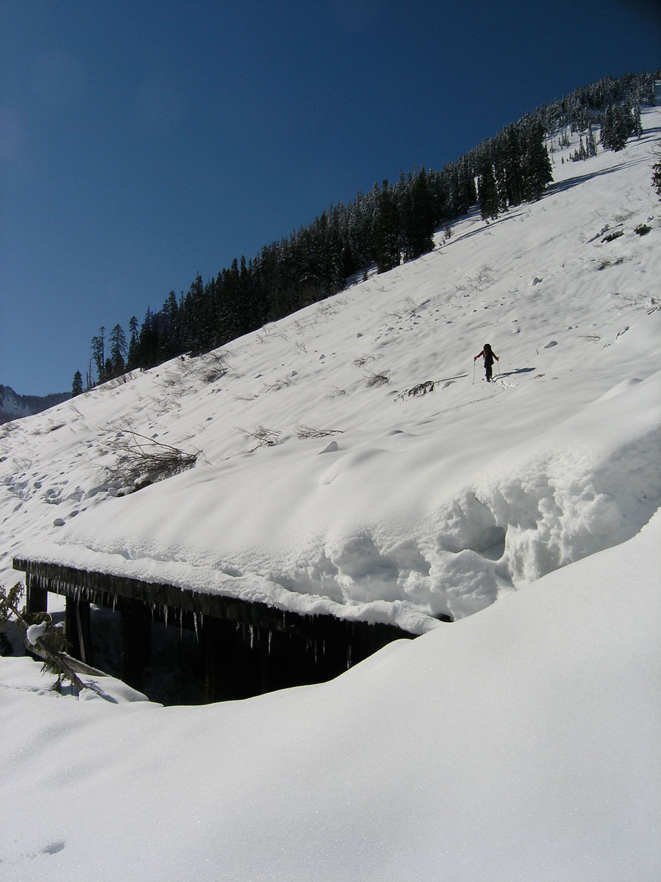 AIARE Level 1 Avalanche Safety Course – BC Adventure Guides