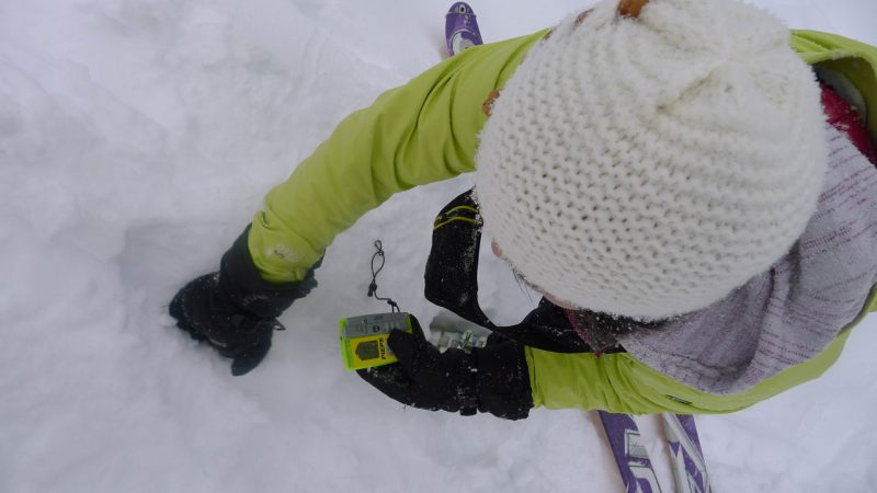 Companion Rescue Skills Practice