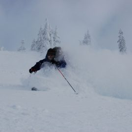 Baker BC Powder Served Daily